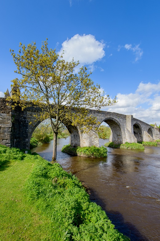 Photo of Old Stirling Bridge on a summer's day flanked by green grass, foliage and trees